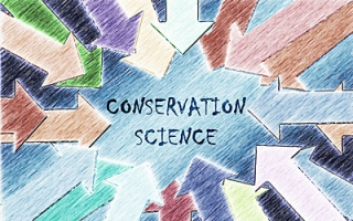 Conservation Science 2018 – Current State of the Field (survey by ICCROM)