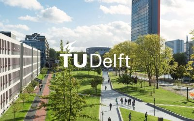 Delft University of Technology (TU Delft) – Netherlands – PhD position Neutron tomography on Cultural Heritage